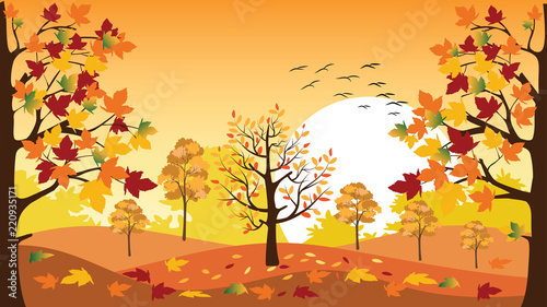 Spoed Fotobehang Meloen Panoramic of Countryside landscape in autumn with fallen leaves on the grass,