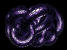 Black Background Of A Snake. 3d Illustration, 3d Rendering.