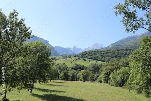 Valle Asturiano