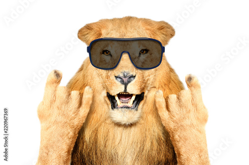Autocollant pour porte Magasin de musique Portrait of a funny lion in sunglasses, showing a rock gesture, isolated on white background