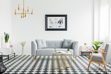 Poster Above Grey Sofa In Bright Patterned Living Room Interior With Armchair And Gold Lamp. Real Photo