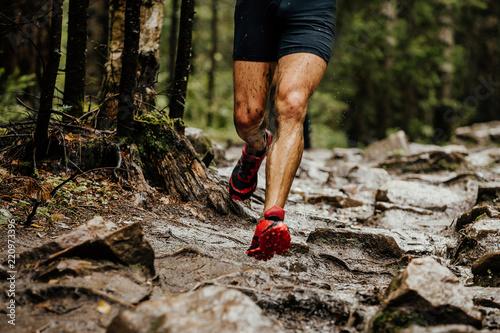 Fototapeta wet feet runner athlete running on trail stones in forest