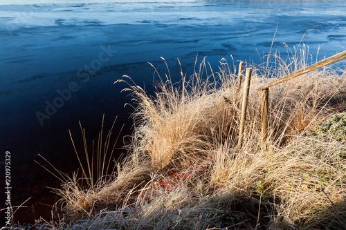 Fotografía Frosty hays at frozen lakeside in morning sunlight