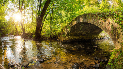 Old bridge over a creek in the forest with bright sun in the background