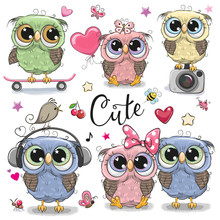 Set Of Cute Owls On A White Background