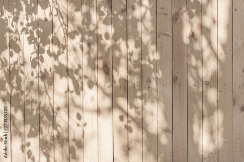 Fotomural a shadow from the leaves on a beige board wall