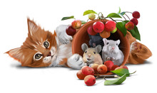 Red Kitten, Mice And Small Apples