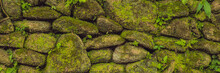 Texture Of Old Stone Wall Covered Green Moss In Fort Rotterdam, Makassar - Indonesia BANNER, Long Format