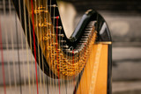 Close Up Shot of a Concert Harp outdoors in central london