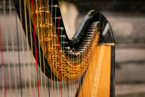 Fotografia, Obraz Close Up Shot of a Concert Harp outdoors in central london