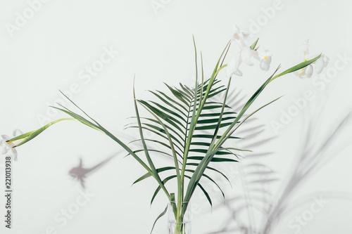 Branchy bouquet of irises with palm leaf Tapéta, Fotótapéta