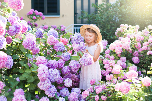 Obraz na plátně Little girl isin bushes of hydrangea flowers in sunset garden