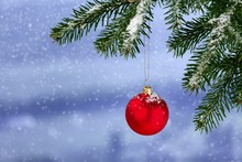 Red Bauble On Green Christmas Fir Tree On  Background
