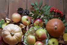 Autumn Still Life With Two Pumpkins And A Basket With Apples, Surrounded By Herbarium Of Leaves, Flowers, Berries And Pine Cones.
