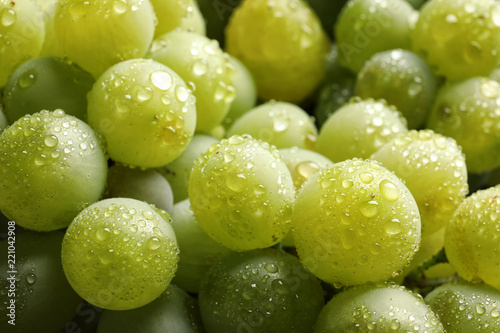 Vászonkép  Bunch of green fresh ripe juicy grapes as background