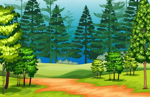 In de dag Lime groen A beautiful nature landscape