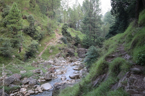 Foto op Canvas Olijf small river passing through rocks in azad kashmir