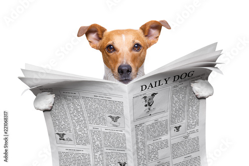 Deurstickers Crazy dog dog reading newspaper