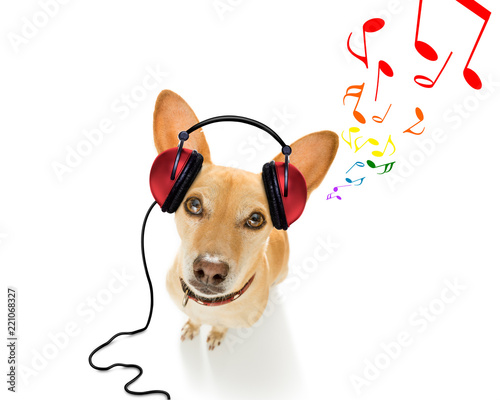 Deurstickers Crazy dog dog listening to music