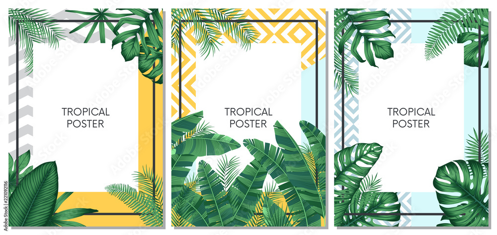 Fototapeta Summer tropical vector set design for cards, poster or flyer with exotic palm leaves