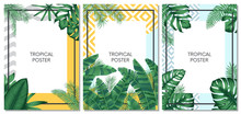 Summer Tropical Vector Set Des...
