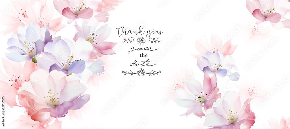 Fototapety, obrazy: Elegant rose flower