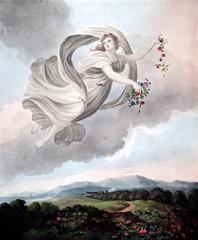 Fototapeta Do sypialni illustration of angel