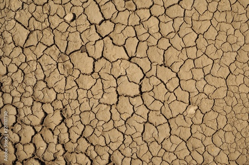 Fotografía the clay cracked because of the heat