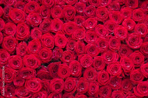 tlo-czerwone-roze