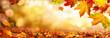 canvas print picture - Bunte Blätter im Herbst verzieren einen breiten unscharfen Hintergrund im Wald