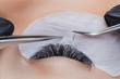 Eyelash extension procedure. Woman master making long lash with tweezers