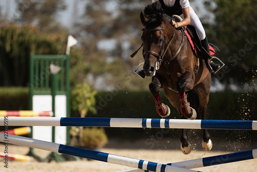 Fotografie, Obraz Jockey on her horse leaping over a hurdle, jumping over hurdle on competition