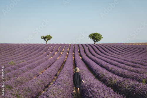 Fotografía  back view of young woman looking at picturesque lavender field in provence, fran
