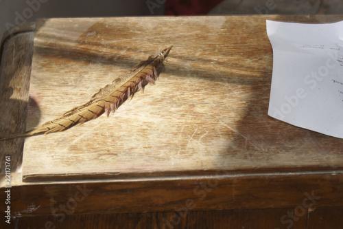 Obraz na plátne Sekretarzyk z piórem i listem