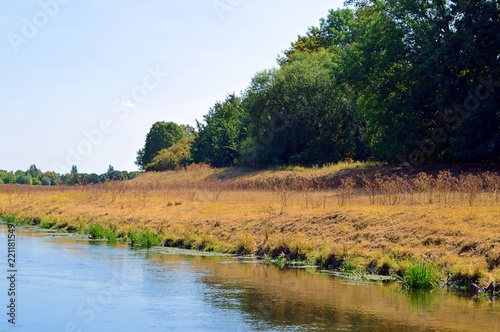 Fotobehang Landschap Meadow landscape with river, grass and trees, recreational area and flood area near Leipzig, summer 2018