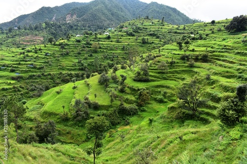 In de dag Pistache lush green mountains landscape