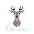 Hello winter. Hand-lettering and the deer in the snowflakes. Design element for congratulations. Color vector illustration on white background.