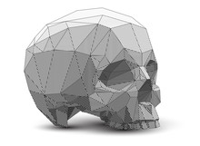 Vector Low Poly Style Line-art Skull Illustration. Polygonal 3d Drawing.