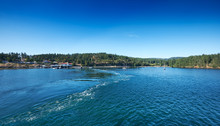 Orcas Island Coastline By The ...