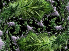 Green Purple Abstract Computer...