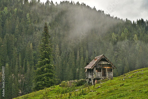 Traditional wooden shepherd huts on high alpine meadow in slovenian part of Julian Alps