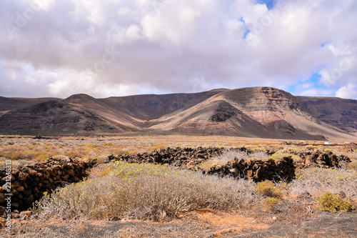 Spoed Foto op Canvas Zalm Landscape in Tropical Volcanic Canary Islands Spain