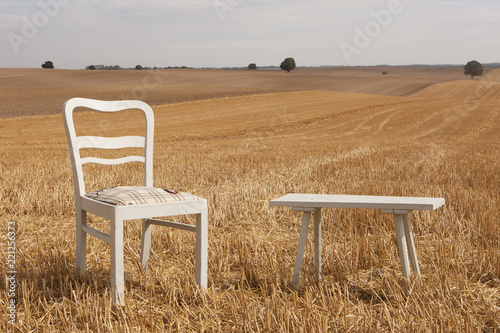 Chair and bench in sunny, rural field, Wiendorf, Mecklenburg-Vorpommern, Germany