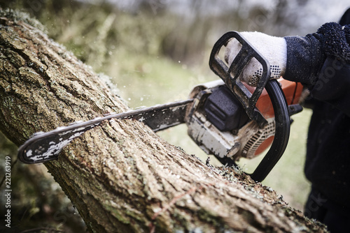 Fotografia  Working lumberjack with his chain saw