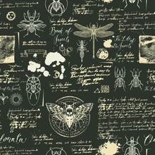 Vector Seamless Abstract Background With Insects. Beetles, Moths, Dragonflies, Ink Stains, Doodles And Handwritten Inscriptions On The Old Manuscripts. Can Be Used As Retro Wallpaper, Wrapping Paper