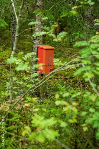 Fototapeta  Brevlåda inne i skogen