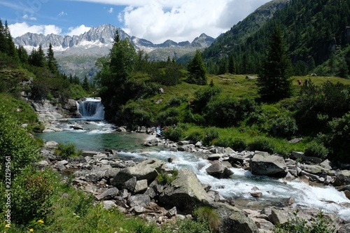 panorama montagna natura fiume acqua riva alberi verde bosco pascolocime rocce cielo azzurro