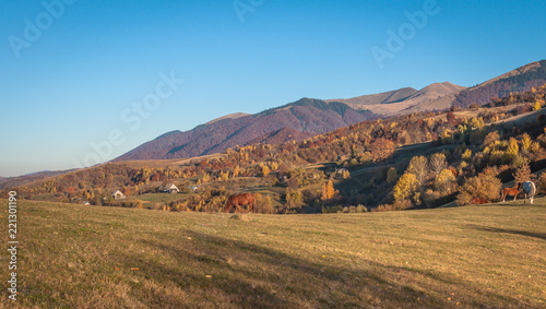 Spoed Foto op Canvas Blauw Horses in the autumn mountains