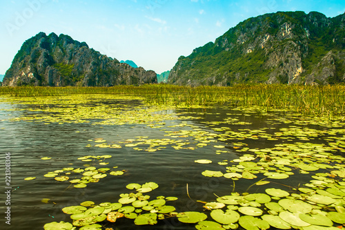 Spoed Foto op Canvas Natuur Van Long Nature Reserve with boats and beautiful mountains, NinhBinh in Vietnam