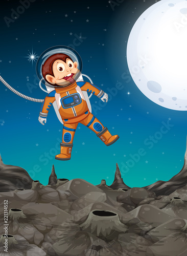A monkey exploring the space